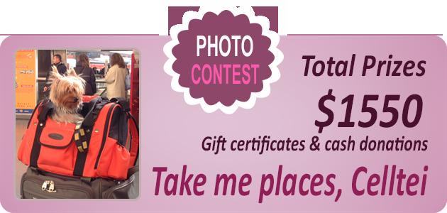 Celltei Photo Contest 2016