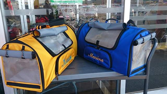 Marine, a Blue & Gold Macaw in Japan, needs a new Celltei carrier